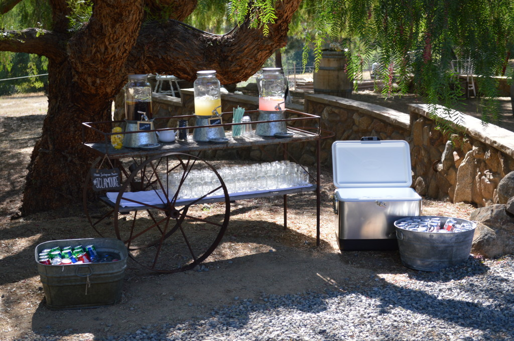 Non-alcoholic Beverage Bar - Country Wedding