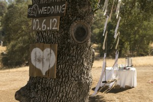 Wedding 10-6-12 401